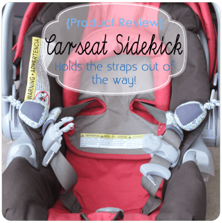 {Product Review} Carseat Sidekick