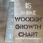 $5 + 30 Minute Wooden Growth Chart