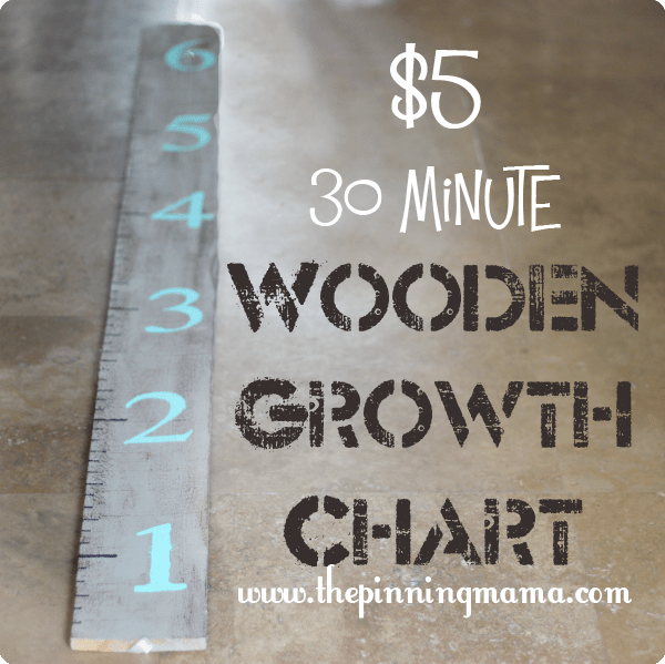 5 30 Minute Wooden Growth Chart The Pinning Mama