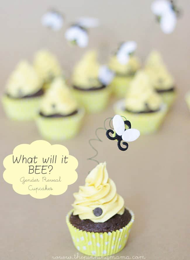 Which will it BEE Gender Reveal Cupcakes - Perfect for a baby shower!