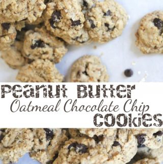 Bite-Sized Peanut Butter Oatmeal Chocolate Chip Cookies