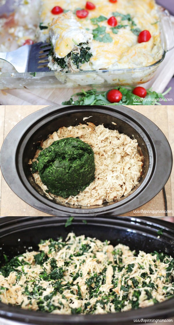 Crock Pot Chicken and Spinach Verde Enchiladas! YUM!