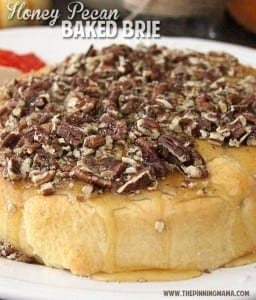 I just made this Honey Pecan Baked Brie and everyone begged for the recipe! Pin this to your appetizer board ASAP!