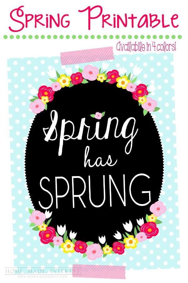 spring_sprung_pinterest