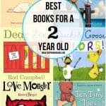 Best Books for 2 Year Old Boys
