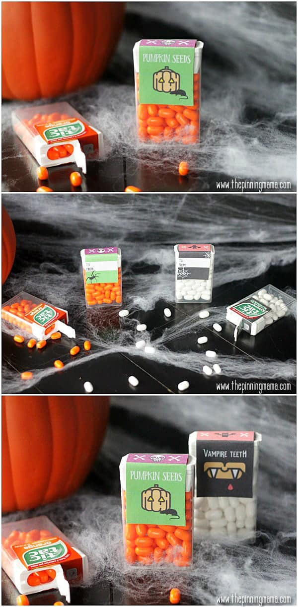 What a fun idea for kids to give to school friends for Halloween!  Free Printable tic tac labels!