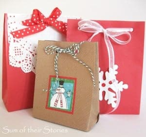 envelope gift bags 2