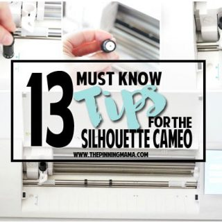 13 MUST KNOW Tips for Silhouette Beginners