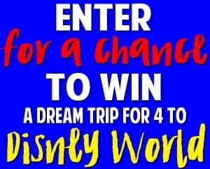 Enter for a chance to win a trip to Disney World!!