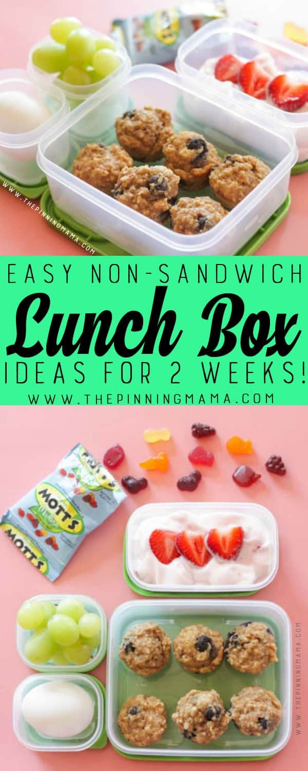 Blueberry Super Food Muffins Lunch box idea - Just one of 2 weeks worth of non-sandwich school lunch ideas that are fun, healthy, and easy to make! Grab your lunch bag or bento box and get started!