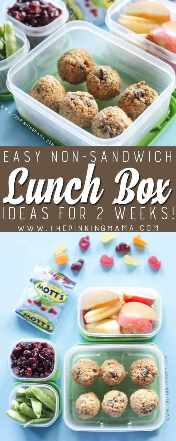Energy Bites Lunch box idea - Just one of 2 weeks worth of non-sandwich school lunch ideas that are fun, healthy, and easy to make! Grab your lunch bag or bento box and get started!
