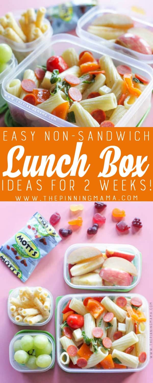 2 weeks of no-sandwich lunch box ideas kids will love- no repeats