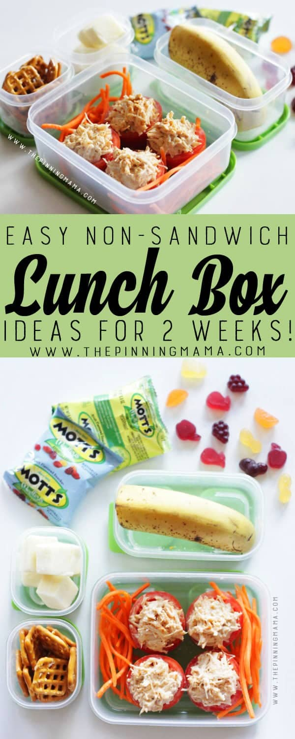 Tuna Stuffed Tomato lunch box idea for kids! Just one of 2 weeks worth of non-sandwich school lunch ideas that are fun, healthy, and easy to make! Grab your lunch bag or bento box and get started!