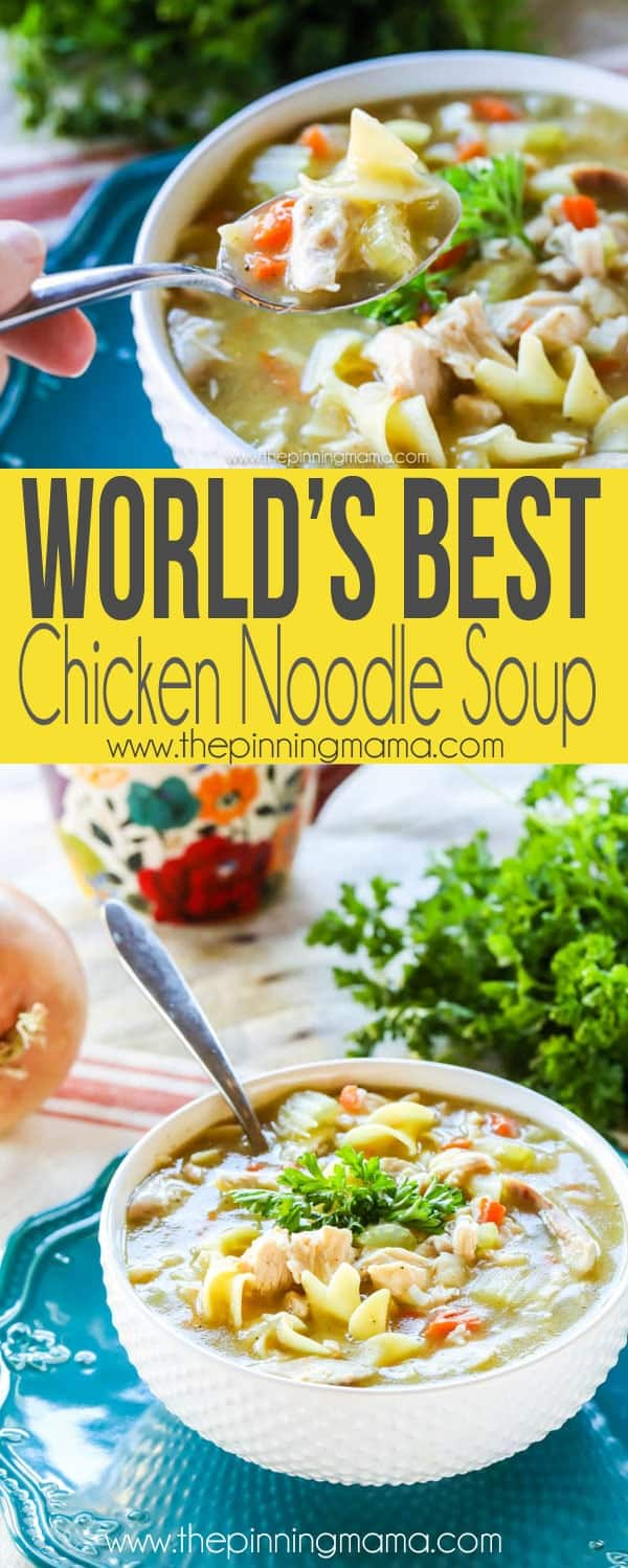 The World S Best Homemade Chicken Noodle Soup Recipe Flu