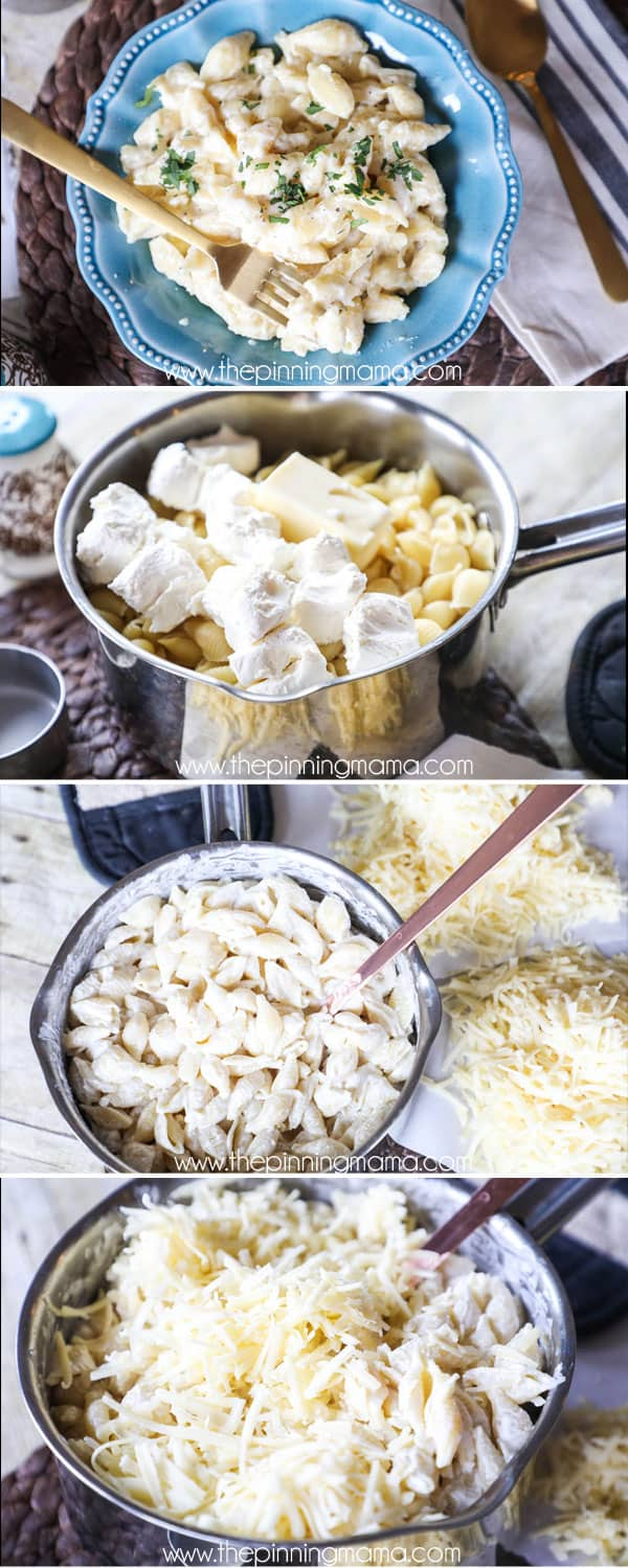 One pot creamy shells and cheese recipe - this is the easiest mac and cheese you will ever make!