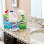 10 Things to You Need to Clean with Bleach in the Bathroom