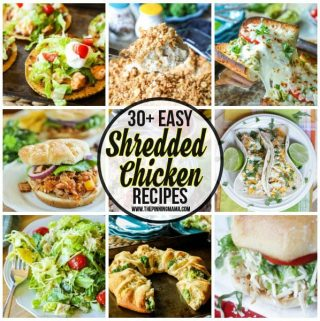 The BIG List of Easy Shredded Chicken Recipes