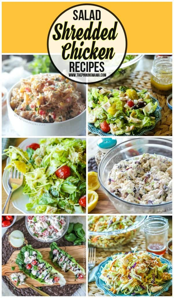 Shredded Chicken Salad recipes