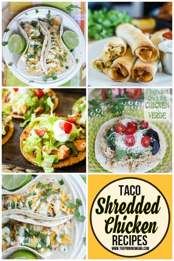 Shredded Chicken Tacos recipes