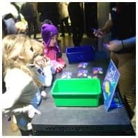 Education Games and Fun Facts at the Boston Aquarium