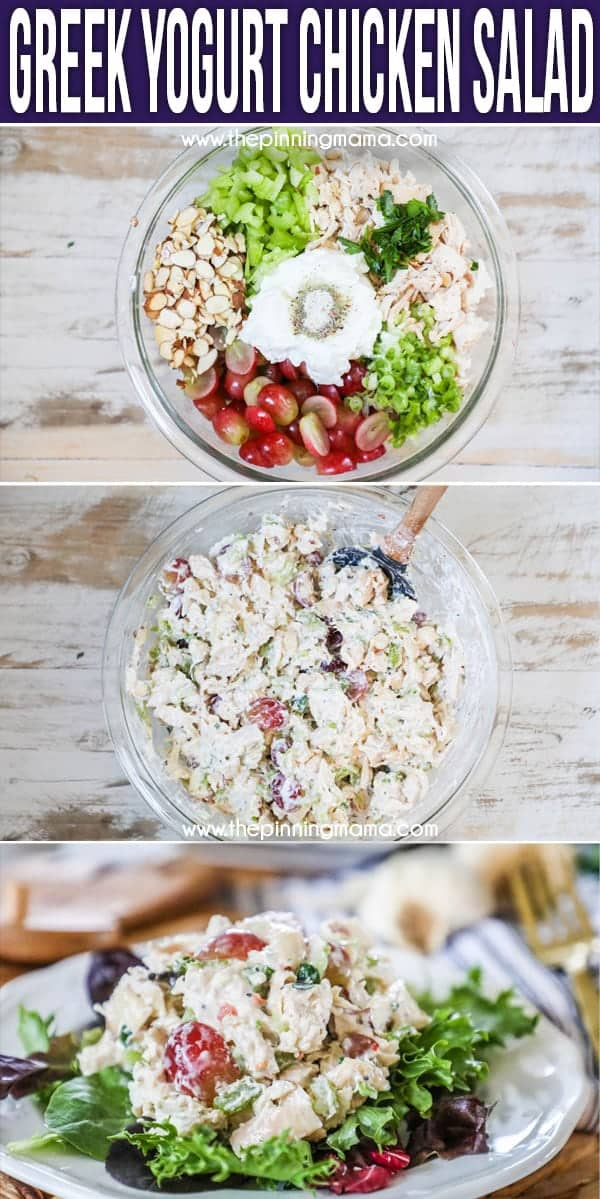 The Best Greek Yogurt Chicken Salad Easy Family Recipes