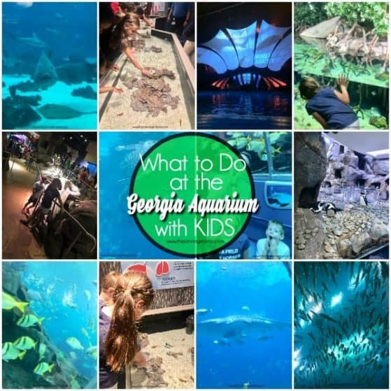 The Georgia Aquarium and all the activities for families.