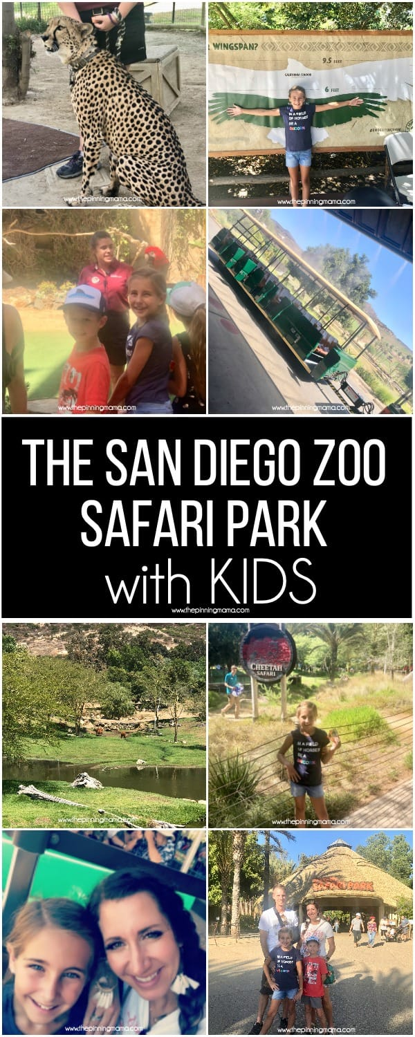 The San Diego Zoo Safari Park with Kids.